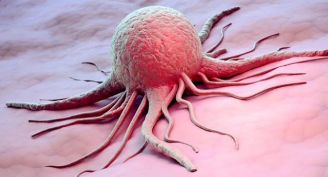 आम के फायदे कैंसर में